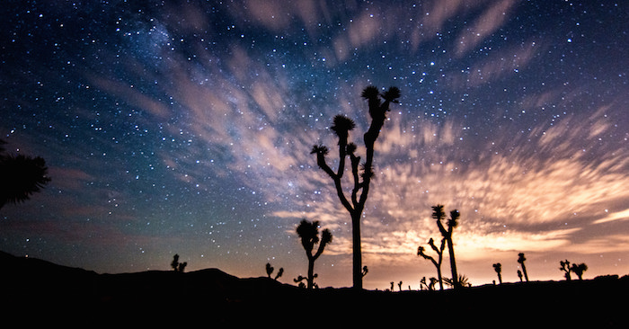 Starry Night in the Mojave Desert